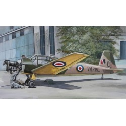 Bucker BU181 Bestmann Foreign Kit 1/72