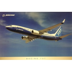 B737NG Flying poster , New Boeing House Colours