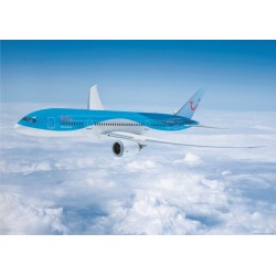 Arke Boeing 787 in flight Poster (Sinke POS-ARKE787)