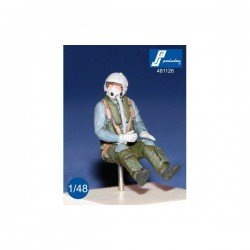 German F4 Pilot Seated In A/C (1 Figure Included) 1/48 Resin Kit