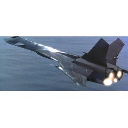 Mig31 Firefox Stealth Fighter (With Xl92 As Bonus) Aigrand 1/144 Resin