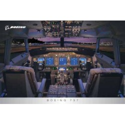 Pilot Poster B737Ng Flight Deck (Grey Border) 91Cm X 61Cm