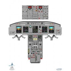 Poster Training Embraer 170/190 With Efis And Eicas Displays Handheld Cockpit Poster 52Cm X 71Cm