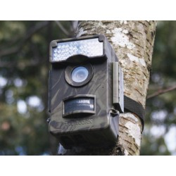 Ltl-6511Wmg Wide Angle Lens Acorn Wildlife Trail Camera. Invisible Black LED illumination.