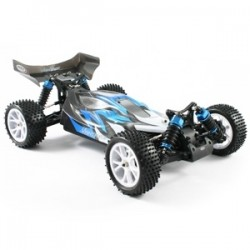 Rc Ftx Vantage 1/10 Brushed Buggy 4Wd Rtr 2.4Ghz
